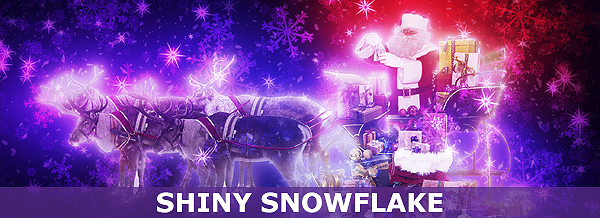 shiny-snowflake-banner